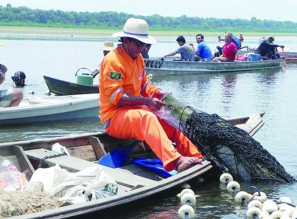 """Amazonas lança o seu """"bacalhau tropical"""""""
